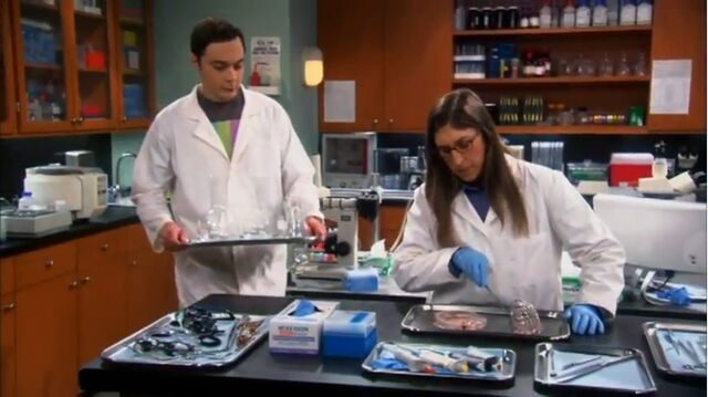 File:The Vacation solution Shamy at the lab.jpg