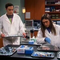 Amy continues her work as Sheldon had to wash the beakers.