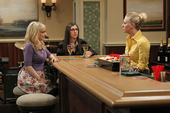 TBBT 6x5 The Holographic Excitation Penny Amy and Bernadette
