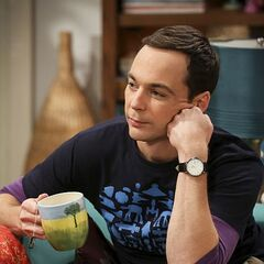 Sheldon listening to Penny.