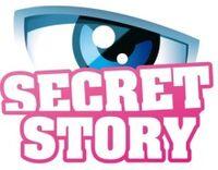 Secret Story France Logo