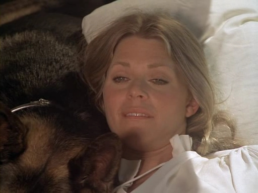 File:The.Bionic.Woman.S03E02.DVDrip.XviD-SAiNTS.avi 002725880.jpg