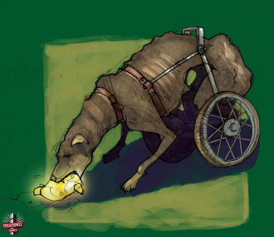 File:WheelchairDogGathererConcept.jpg