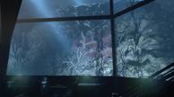 BioShockInfinite 2015-10-25 14-43-54-930