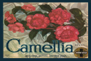 File:Camellia.png