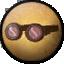 Icon norris goggles