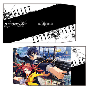 Black Bullet Book Cover