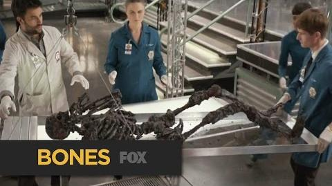"""BONES Preview """"The Murder of the Meninist"""" FOX BROADCASTING"""