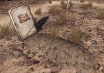 Fry grave