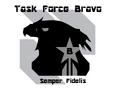 Task Force Bravo