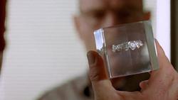 2x03 - Bit by a Dead Bee 5.png