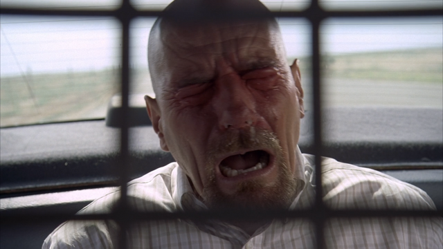 File:3x2 Walt peppersprayed.png