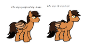 One wing-brony templet-