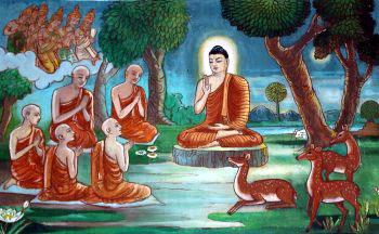 Monks with Buddha heimat-fuer-tiere de