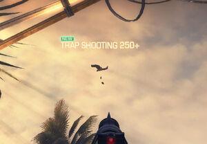 Trapshooting