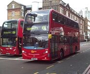 London Buses Route 436