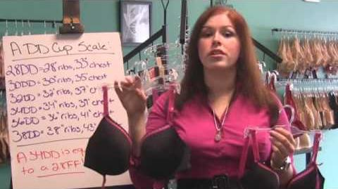 Bra Naked Truth - How Band & Cup Sizes Work