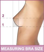 File:Measurement.jpg