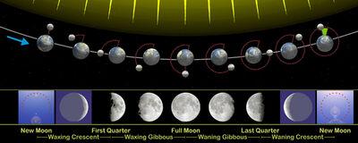 Moon phases en