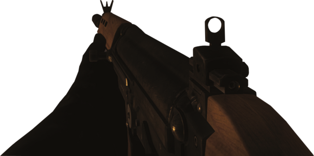 File:FAL Zombies BOII.png