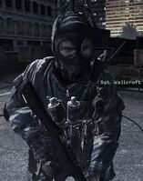 Wallcroft Mind the Gap MW3