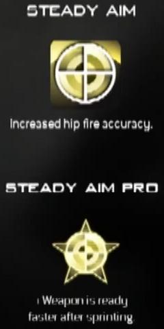 File:Steady Aim MW3 CreateAClass.png