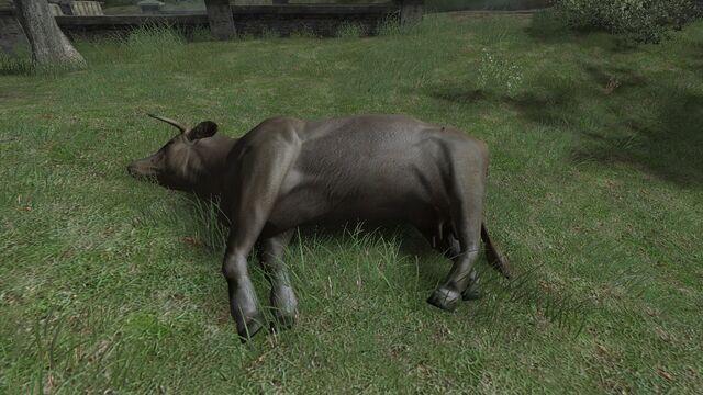 File:Dead cow CoD2.jpg
