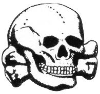 File:SS Skull 2.png
