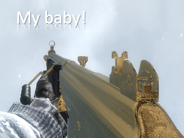 File:My baby galil.png