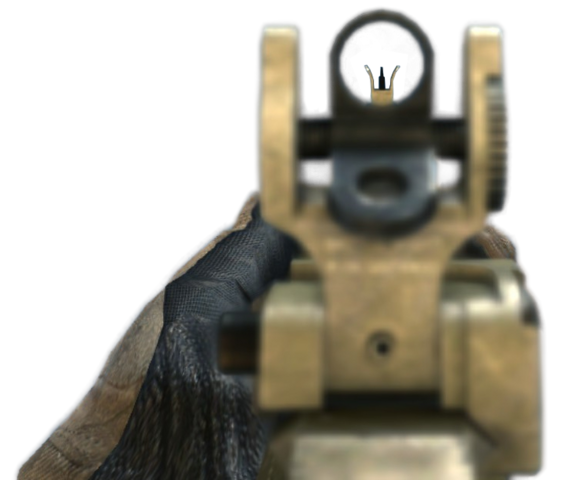 File:ACR 6.8 Iron Sights MW3.png