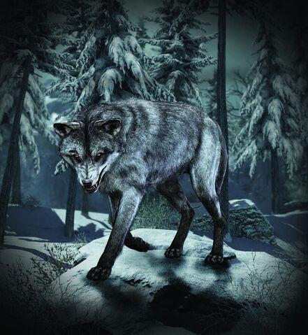 File:Wolf Skin Guard Dog CoDG.jpg