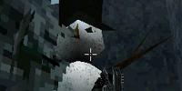 The Hidden Snowman