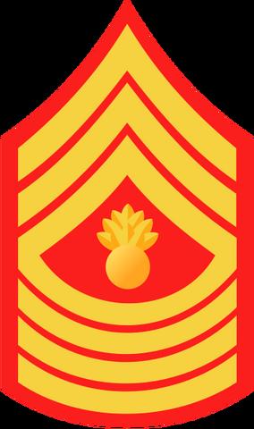 File:USMC-E9.png