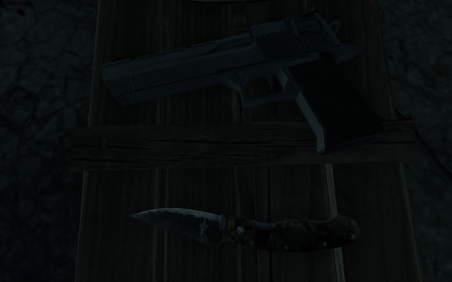 File:COD4 Desert Eagle down the rabbit hole MW3.png