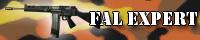 File:FAL expert.jpg