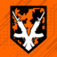 Doing Camo Right achievement icon BO3.png