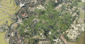 Bird's Eye View Jungle BO.png