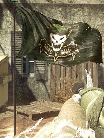 File:SOG Flag BO.jpg