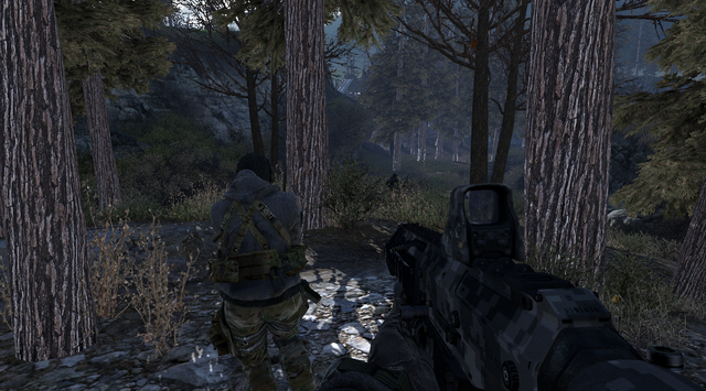 File:Woods Loose Ends MW2.png