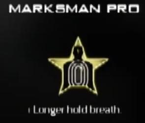 File:Marksman Pro MW3 CreateAClass.png