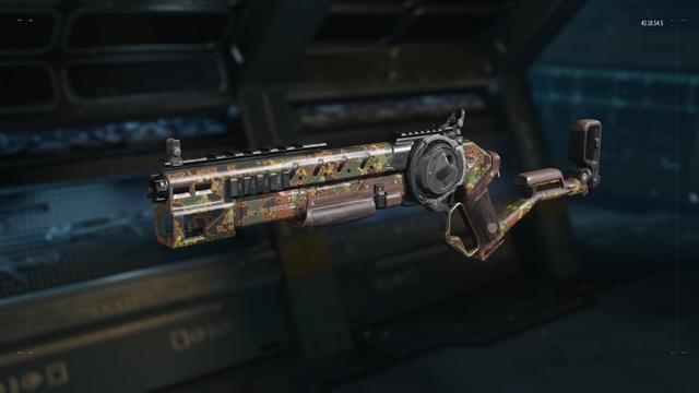 File:Argus Gunsmith model Flectarn Camouflage BO3.png
