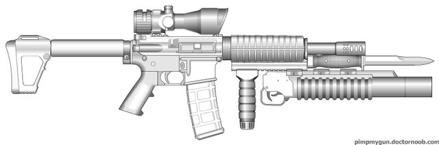 File:Personal LTC Baik PMG M1 Carbine.jpg