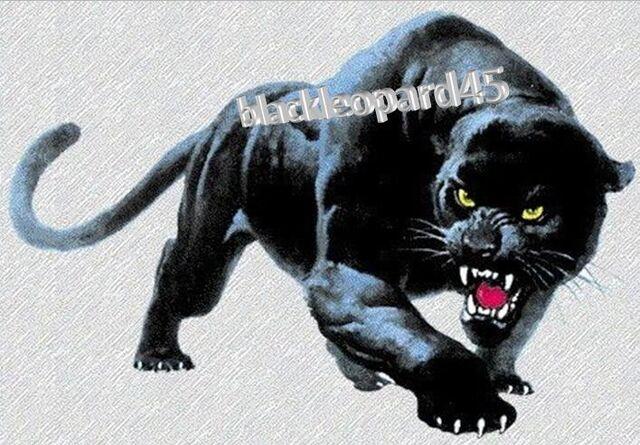 File:Blackleopard45-logo.jpg