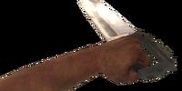Bowie Knife