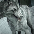 Guard Dog wolf skin CoDG.png