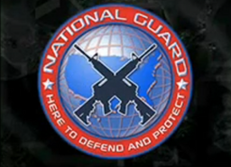 National Guard Logo MW3DS