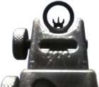 FAD iron sights CoDG