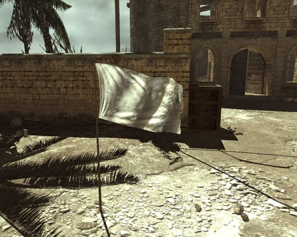 File:Domination blank flag MW3.jpg