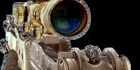 M14 EBR/Camouflage