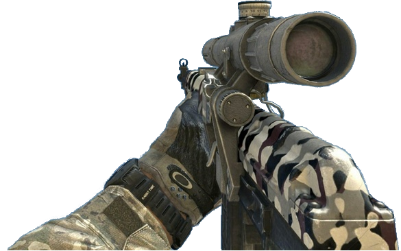 File:Dragunov Snow MW3.png